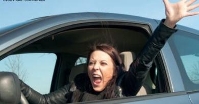 Journée internationale courtoisie Lille étudiants voiture permis Université Catholique jeunes conducteurs