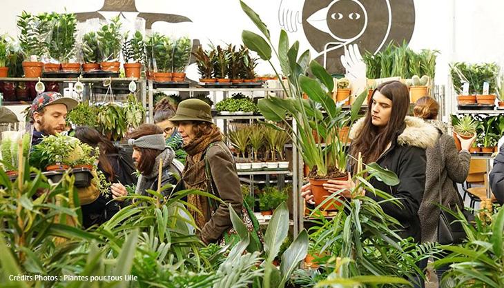 plantes Lille pas cher verdure cactus plantations vente salon